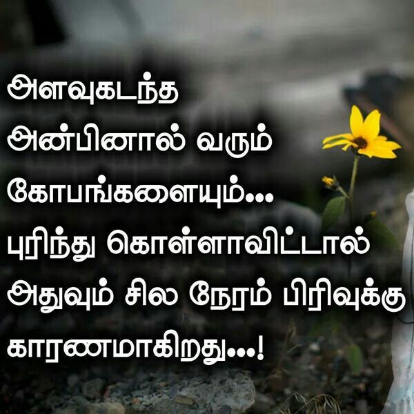 121 Best Padithathil Pidithathu Tamil Kavithai Images On Pinterest Quote Tamil Kavithaigal