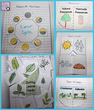 Primary Science Notebook Activities