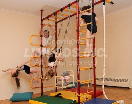 25 best jungle gyms for limited space images on pinterest for Basement jungle gym