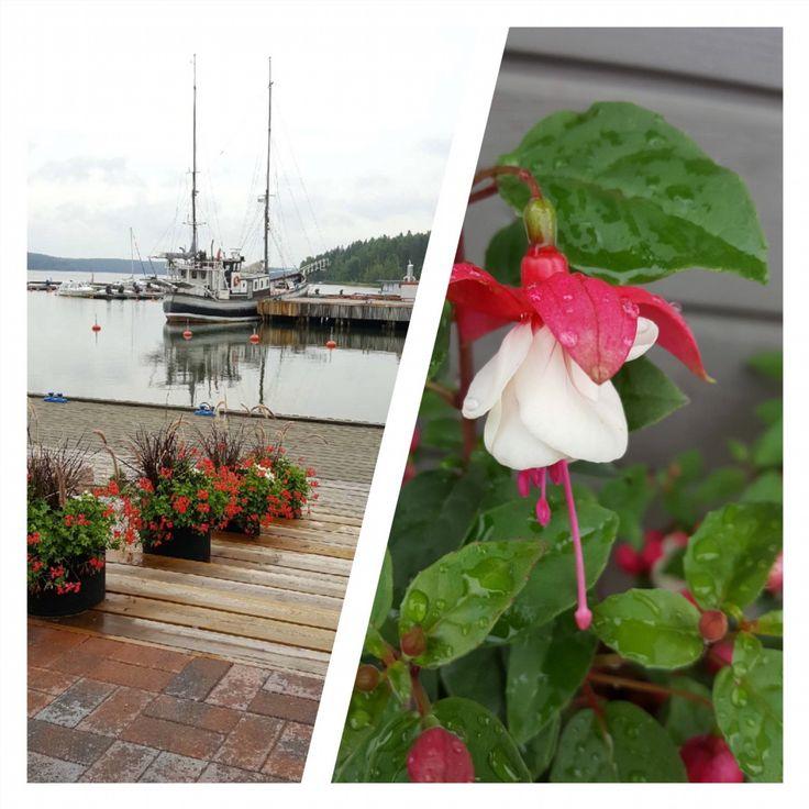 Kesän viimeinen päivä. Verenpisaraa. Sadepisaraa. Ovet yhä avoinna. Tervetuloa! #timeforcoffee #finnisharchipelago #mathildanmarina #visitsalo #visitmathildedal #flowers #yachts #boats #summer17 #welcome #restaurant