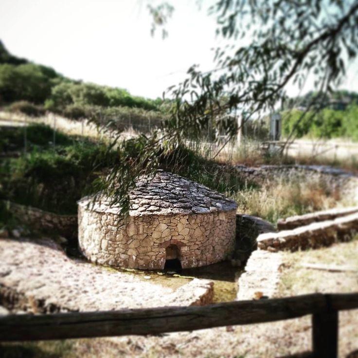 Le sorgenti di Romana. #Sardegna