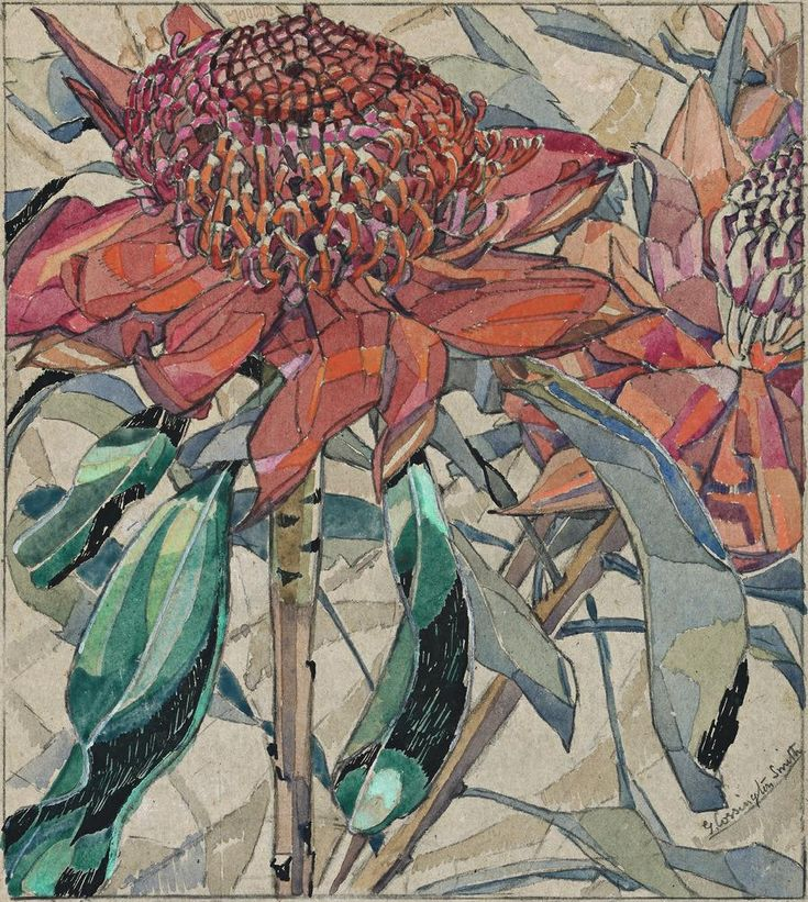 GRACE COSSINGTON SMITH WARATAH, c1925 20.5 x 18.5 cm gouache over pencil and ink on grey paper