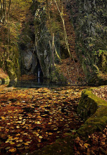 Autumn in Bükk National Park, near Szilvásvárad, Hungary (by DonCsabito). Bükk gebergte, Hongarije