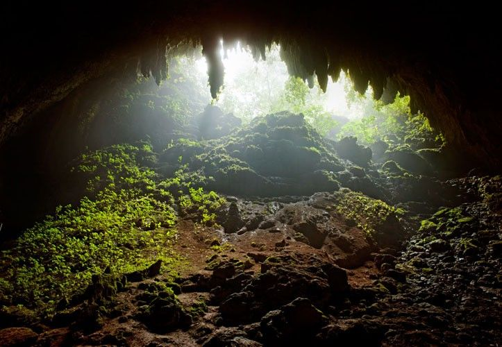 Hidden Treasures: 03 - Peter Lik. Peter Lik Edgy - Under Ground - Trending - Art to complete your Urban Lifestyle  www.powerhousegrowers.com info@powerhousegrowers.com @Pam Naugle Chastain Growers #TheUrbanLifestyle