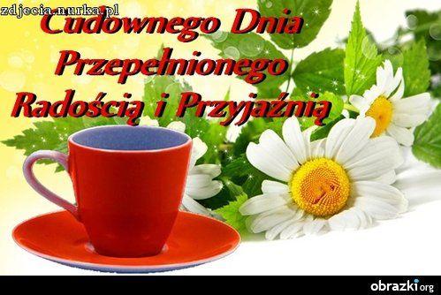 http://pu.i.wp.pl/bloog/71304227/47873294/591965_1680x1050_flo_Ek_big.jpg