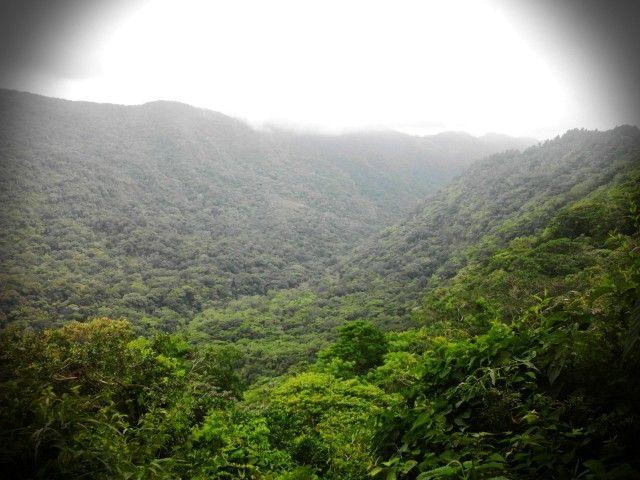 Vista desde el mirador, en Parque Nacional El Imposible, Ahuachapan, El Salvador #ElSalvador