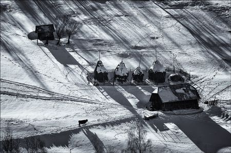Shadows of winter Photo by Eduard Gutescu -- National Geographic Your Shot