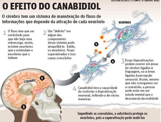 Estimulação Magnética Transcraniana, Neuromodulação e Neurologia