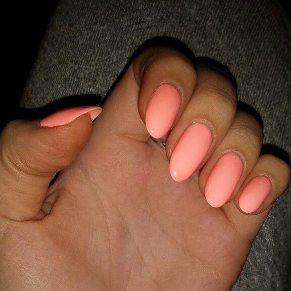 Nails, hybryda, semilac