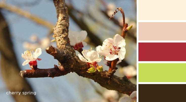 palette - cherry spring