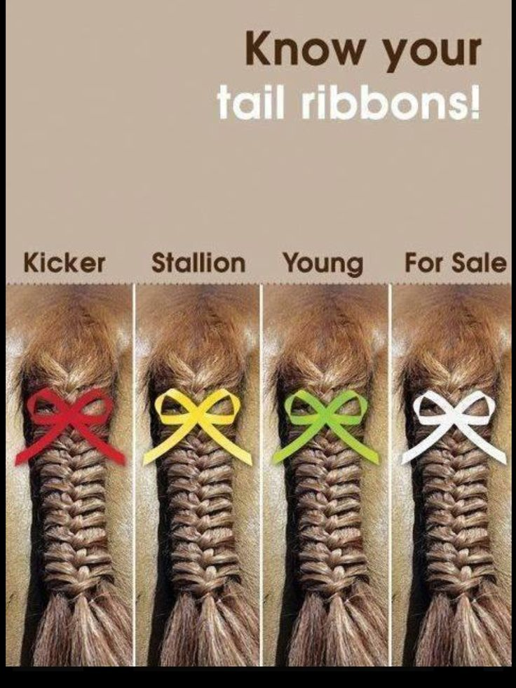 Know your ribbons