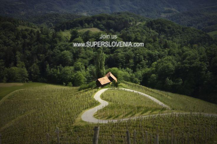 Pridružite se nam na strani #SuperSlovenia. http://www.superslovenia.com  #slovenia #ifeelslovenia #travelslovenia