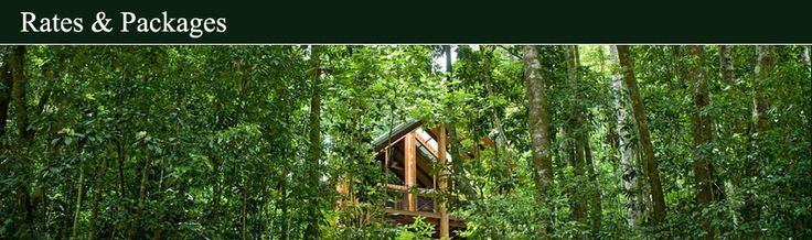 Atherton - The Canopy Treehouses - 90 mins from Cairns - $319 a night