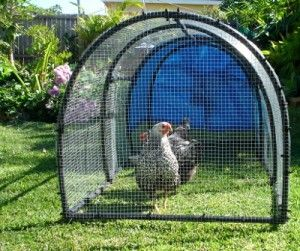 Light weight and easy to move portable chicken coop.