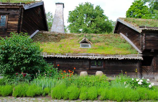 Skansen Sod Roof Houses Bears And Great Views Of