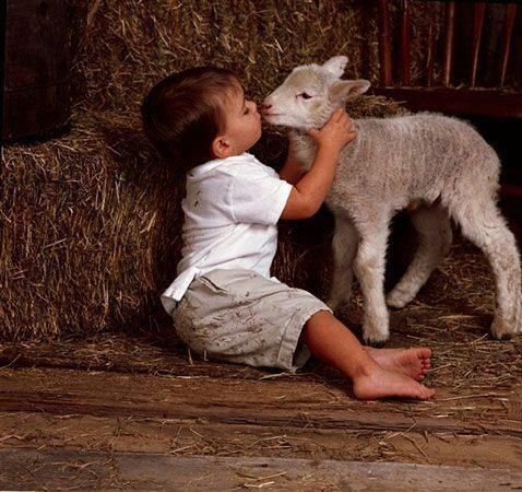 .because all creatures has a spiritual soul.