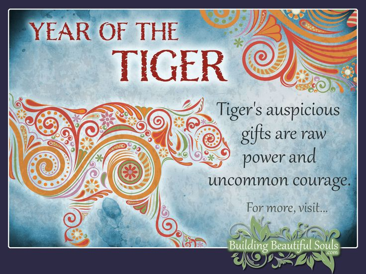 My Chinese Zodiac Sign: Tiger