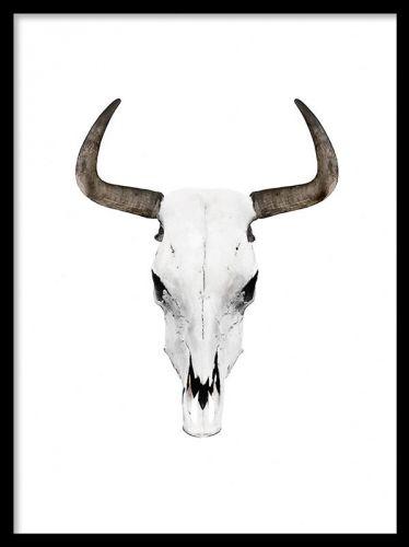 Buffalo horns poster. Poster med buffelhorn. Motivet passar in i många olika hem. Passar mycket bra till både modern och klassisk eller vintage inredning.