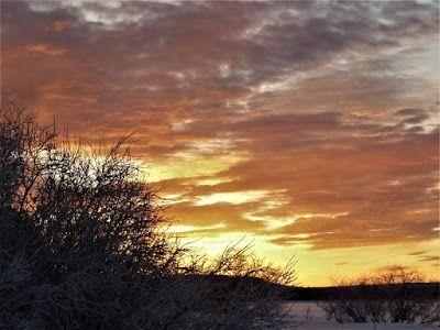 Matkojeni blogi: Auringonlasku noin klo 15.14. Auringonlasku noin klo 15.14 6.1.17 Oho. Tänäänkin aurinko nousi ja laski komeasti. Eilen oli kovin pakkanen -31 ja risat. Mutta niin kai oli kaikkialla Suomessa. Sunset that o´clock 06.01.2017 aurinko laskee ennen kolmea Suomen aikaa. Kiirehdin auringonlaskua kohti kuten Bram Stokerin Draculassa ;) I´m  Racing  Against The Sunset- Bram Stokers Dracula