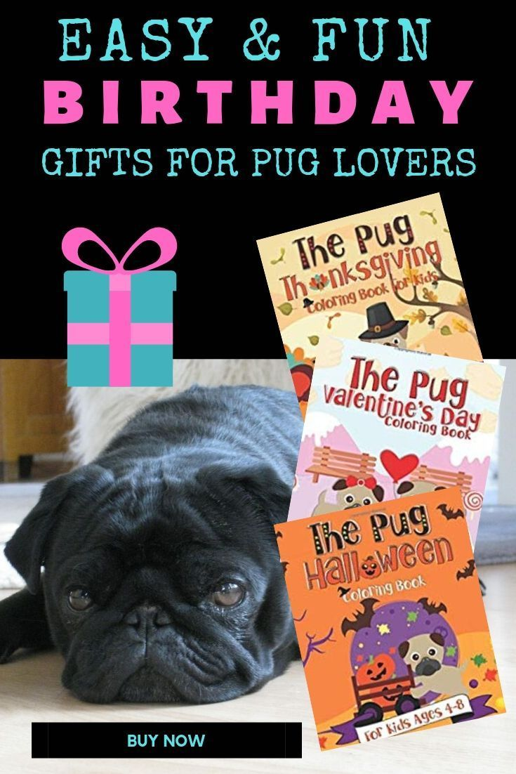 Grab This Series Of Pug Holiday Coloring Books That Are Perfect