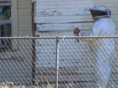 'Killer bees' leave Texas man dead, woman in serious condition