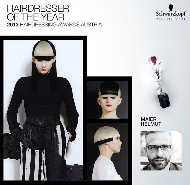 Maier Helmut - 2013 hairdresser of the year Austria #HairdressingAwards