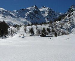 <image: Alpage de Promoud 2000m 1,5m de neige>