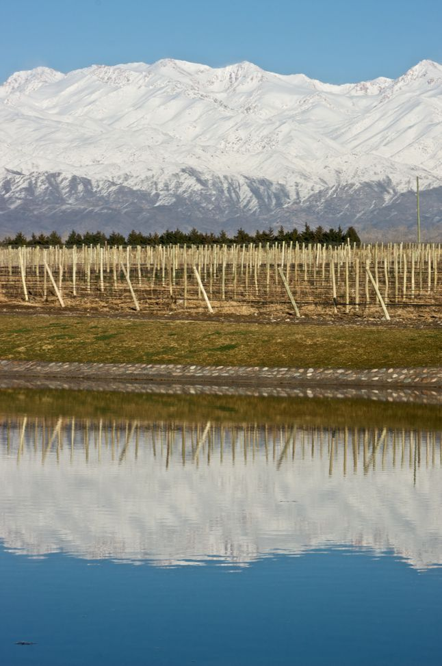 Domaine Jean Bousquet, Mendoza, Argentinien.    Klick aufs Bild führt zu den zugehörigen Weinen ;-)    Bis Ende Oktober 2012 auf alle Weine 5%! Den Rabattcode für 5% zusätzlichen Rabatt findet Ihr in unserem Newsletter vom 8.10.!  (http://eepurl.com/qftxT)    Viel Spaß!