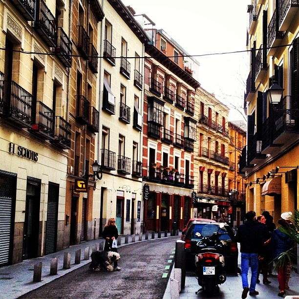 127 best images about famous streets and squares of madrid for Jardin secreto wine
