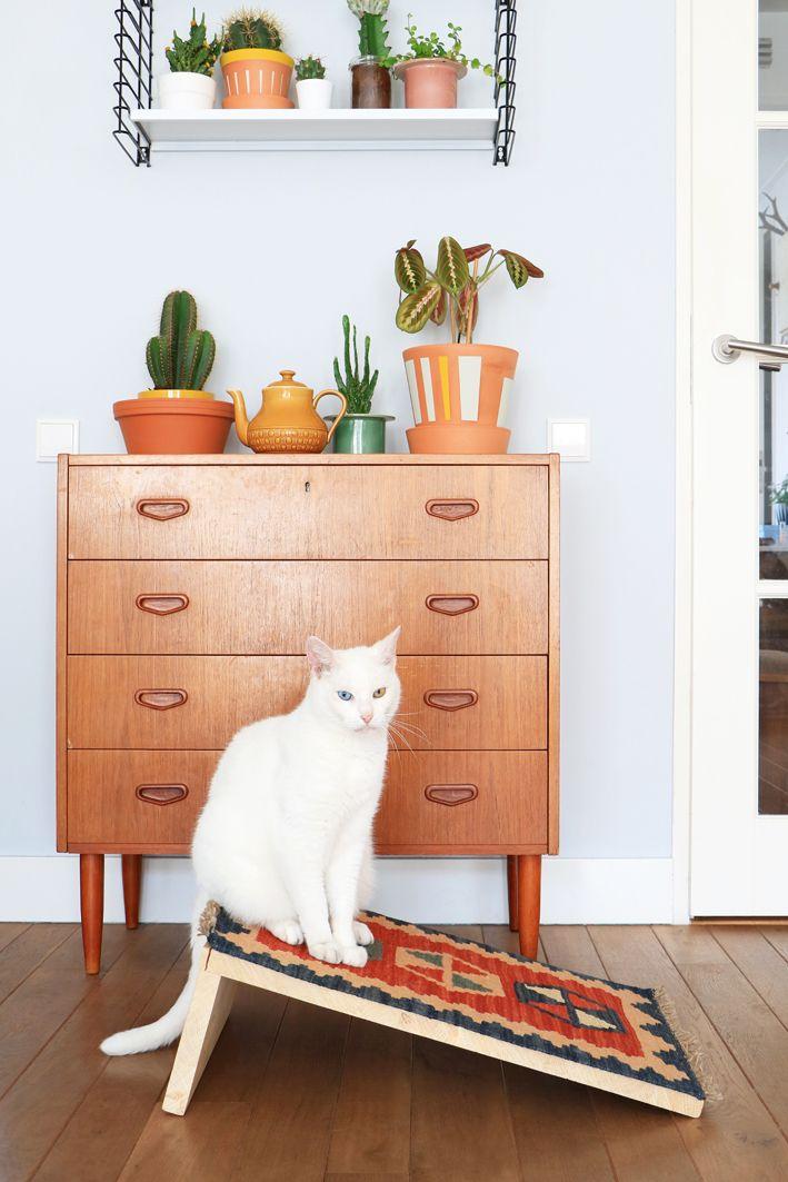 Best 25 Cat Scratcher Ideas On Pinterest Cat Towers