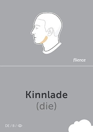 Kinnlade #CardFly #flience #human #german #education #flashcard #language