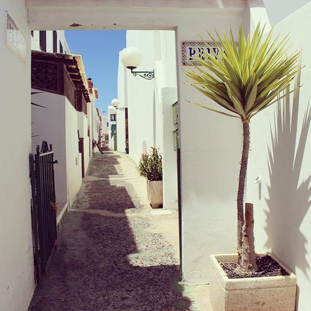 #fuerteventura #fuerte #fuerteventuraexperience #morrojable #jandia #canaryislands
