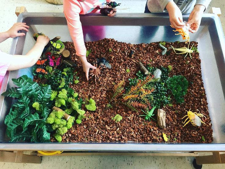 """76 Likes, 4 Comments - Laura King (@kindergartenteachertired) on Instagram: """"Another sensory bin masterpiece by @xkinderlifex ! 🙌😘 Insect small world play 🐛🐌 -reptile substrate…"""""""