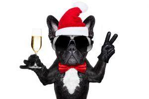 Bientôt Noël – Une surprise tous les jours