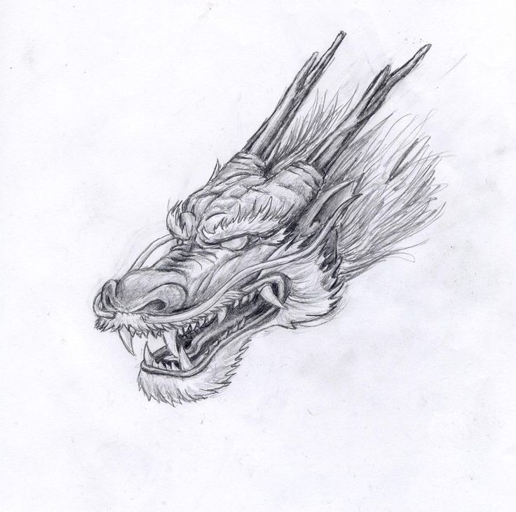 Chinese Dragon by marielleroyseth.deviantart.com on @deviantART
