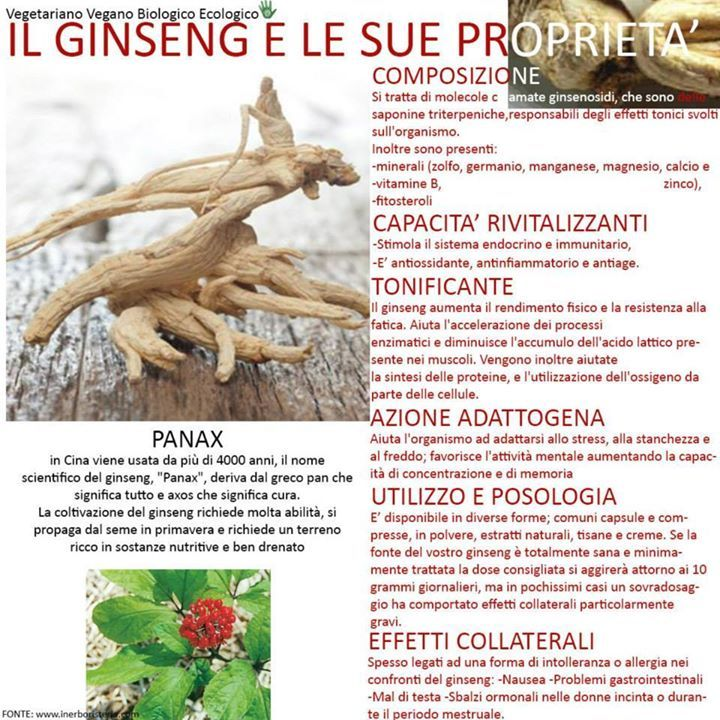 Il ginseng e le sue proprietà