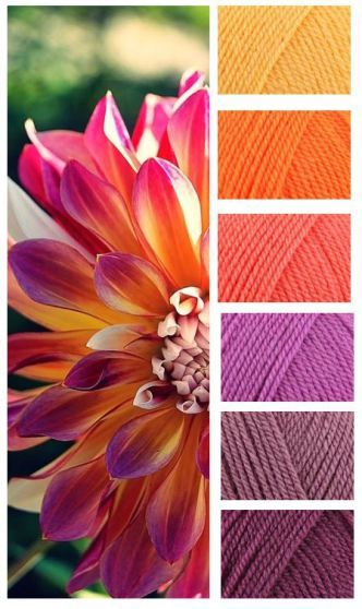 Stylecraft Special DK – Sunshine – Jaffa – Shrimp – Magenta – Grape – Plum