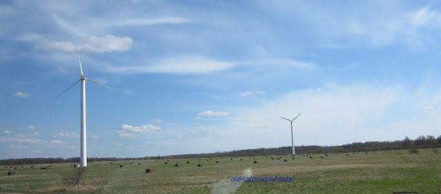 Windmills by the road close to border of Latvia