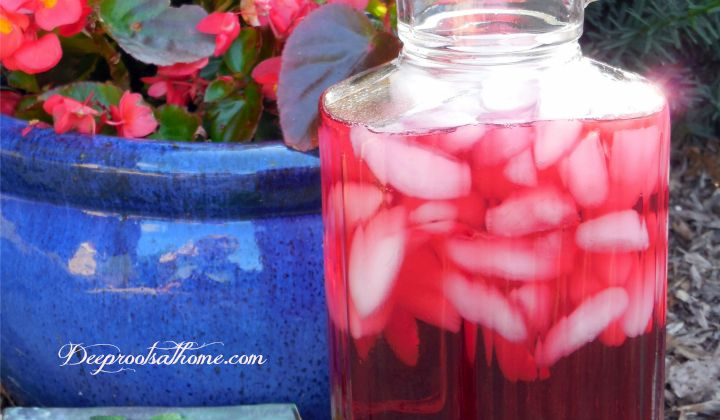 Did you know store-bought Kool Aid is linked to hyperactivity in children? Here is a recipe for an identical-tasting, but healthy, alternative Kool-Aid.