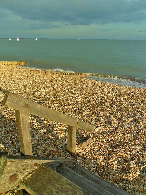 ~Shingle beach on Autumn Afternoon, Calshot, New Forest, Hampshire. England~