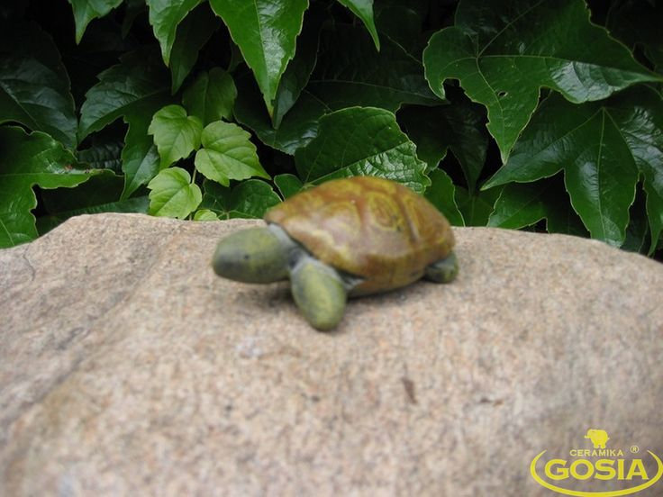 Żółwik mały - figurka ceramiczna ogrodowa