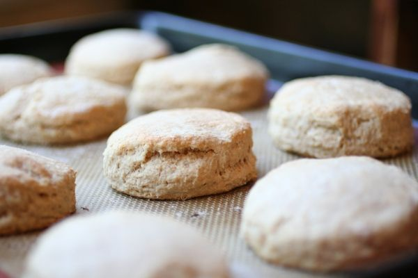 whole wheat biscuit whole wheat biscuits flour biscuits whole wheat ...