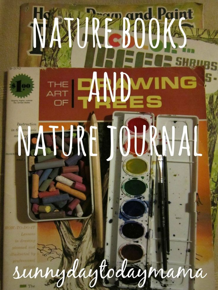 Nature Journal inspiration and  books for nature study and journaling with children sunnydaytodaymama...