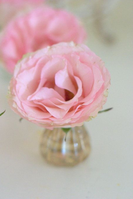 Vases from Cox & Cox pastel pink blush Roses wedding decor to scatter on guest tables