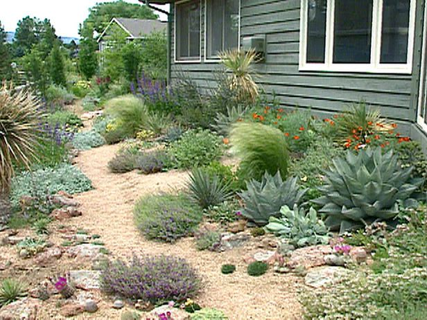 Xeriscape Landscaping | Creating Resilient Gardens : Archive : Home & Garden Television