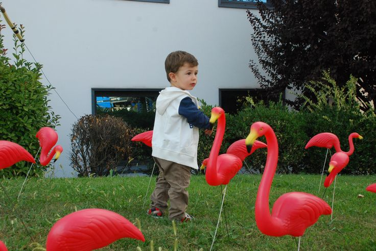 #child #flamingos in front of our offices! Lineabeta #everydaydesign