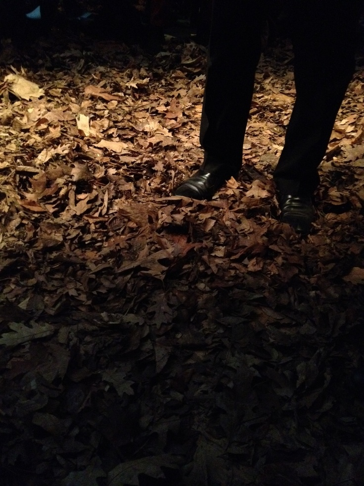 Shoes on leaves