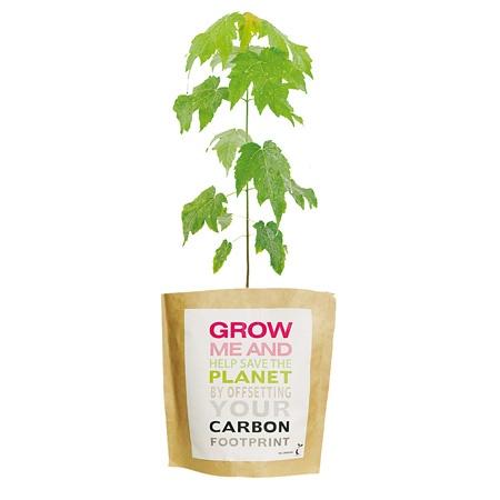 Für alle die schon mal einen Baum pflanzen wollten - jetzt geht's ganz einfach!