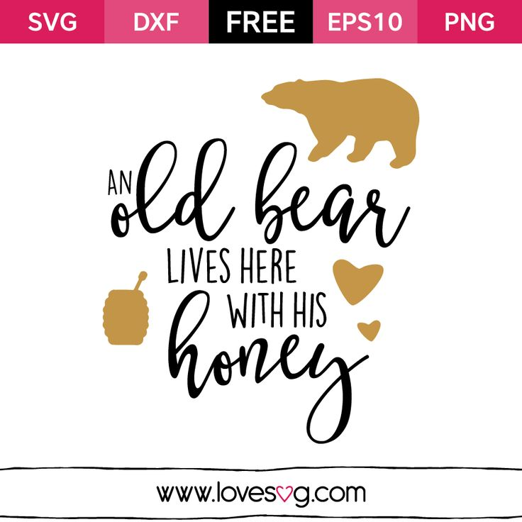 Free SVG cut files - An old Bear Lives here With his Honey