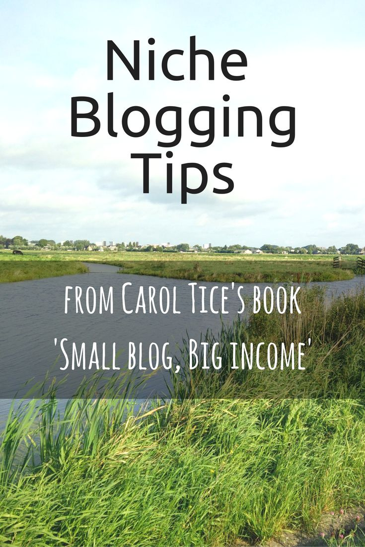 Niche blogging tips | From Carol Tice's book Small blog, Big income